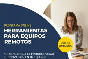 HERRAMIENTAS PARA FACILITAR EQUIPOS REMOTOS : ESTRUCTURAS LIBERADORAS + HERRAMIENTAS VIRTUALES